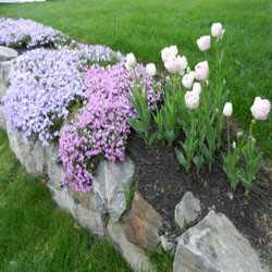 North Andover landscaping